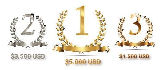 xtb trading cup premios